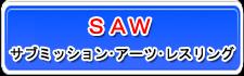 武学者SAW試合結果