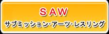 武学者SAW行事報告